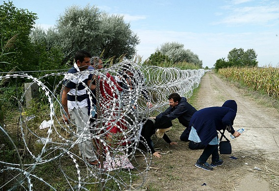 Migrants_in_Hungary_2015_Aug_018 -डस्ट बोल