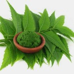 5-Amazing-Neem-Face-Packs-For-All-Skin-Types